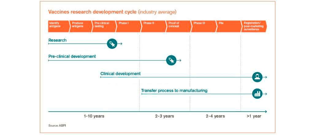fases del desarrollo de una vacuna